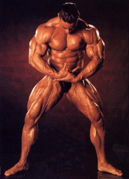 Bodybuilding Videos made by me http//bbvids.blogspot.com/ www